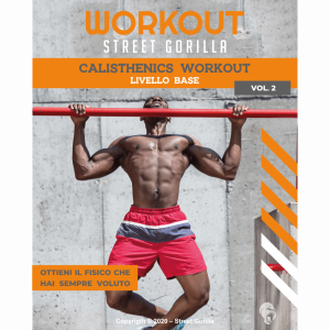 calisthenics workout street gorilla